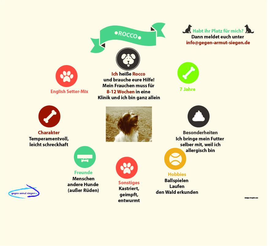 Armut Haustier Unterkunft Hilfe Geld Klinik Wer kann mich aufnehmen Unterkunft Hund